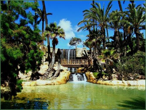 Viajes a Alicante: parque El Palmeral, te lo recomendado para tus vacaciones en familia